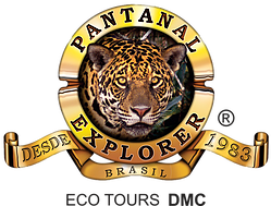 Pantanal Explorer